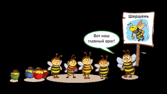 В гости к пчелам